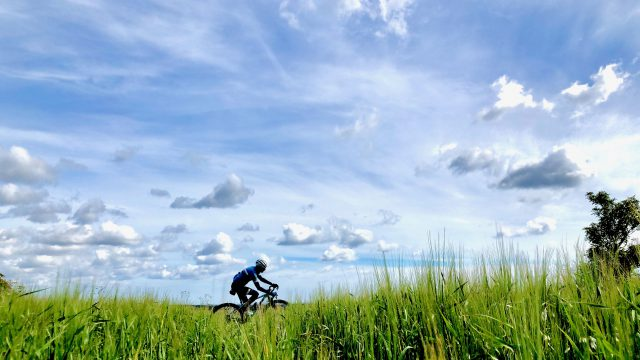 Cycling through long grass