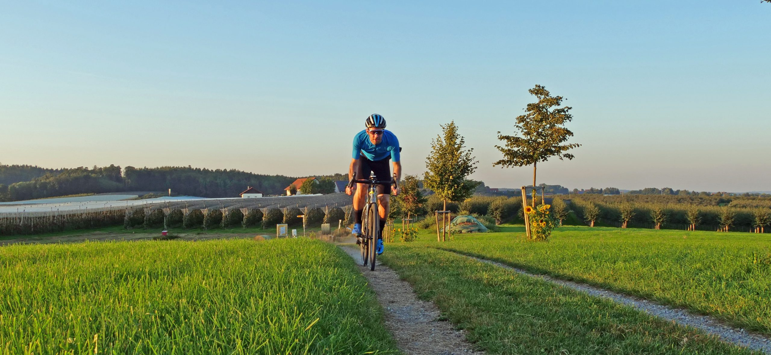Gravel cyclist riding in a sunny landscape